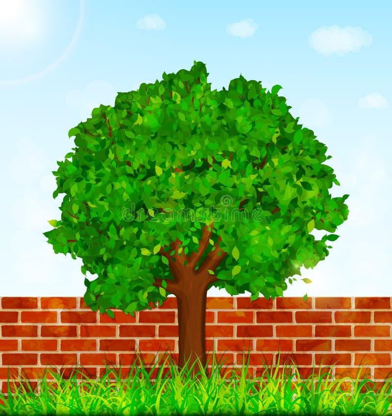 Trädgårds- bakgrund med den gröna träd-, gräs- och tegelstenväggen vektor illustrationer
