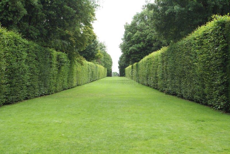 trädgårds- bana Trädgårds- bana arkivfoton