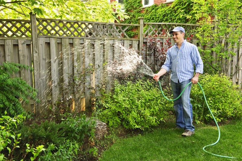 trädgårds- bevattna för man royaltyfri bild