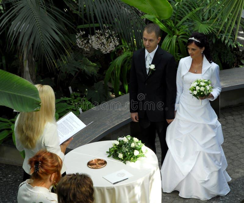 trädgårds- bröllop royaltyfri foto