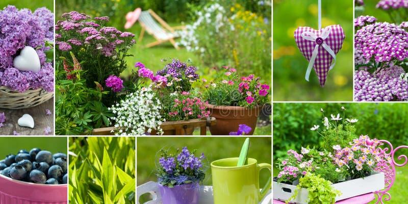 Trädgårds- collage för sommar arkivbild