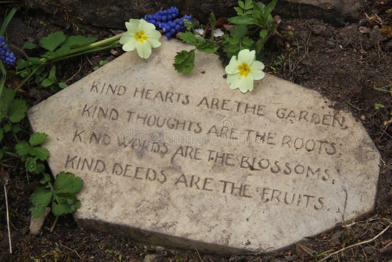 Trädgårds- dikt på stenen med primulavänlighetbegrepp arkivbilder