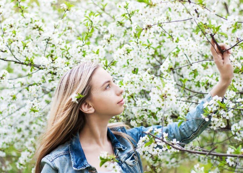 trädgårds- flickafjäder royaltyfri fotografi