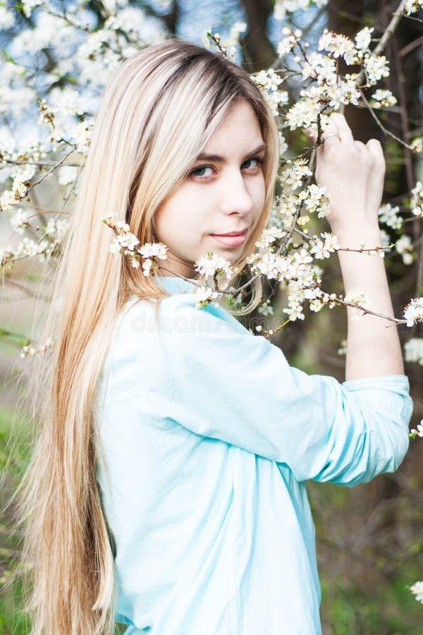 trädgårds- flickafjäder arkivfoto