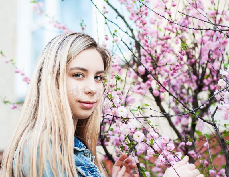 trädgårds- flickafjäder arkivbild