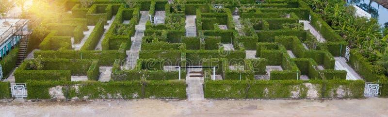 Trädgårds- garnering är en labyrint med det gröna sidaväggstaketet med Co arkivfoton