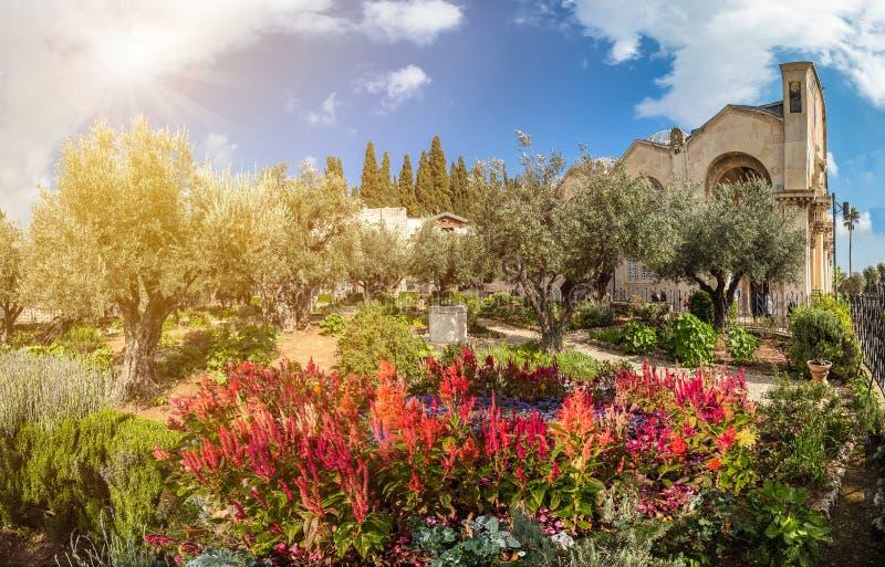 trädgårds- gethsemane royaltyfri bild