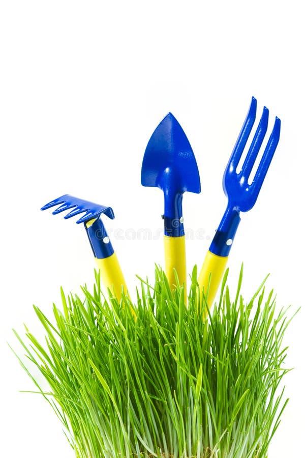 trädgårds- gräsgreenhjälpmedel royaltyfria foton