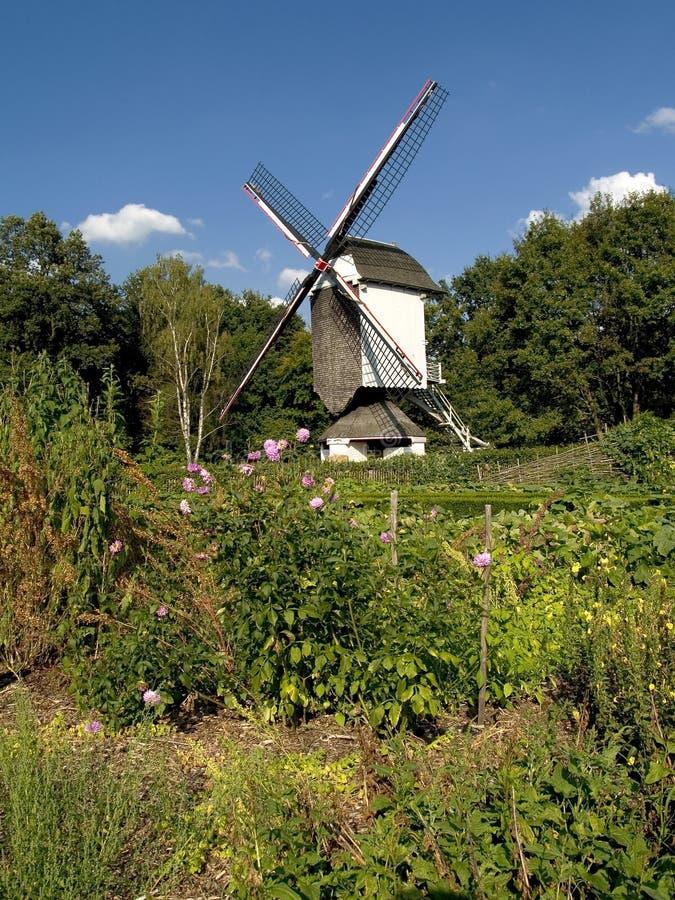 Download Trädgårds- Grön Gammal Windmill Arkivfoto - Bild av blomma, wind: 234336