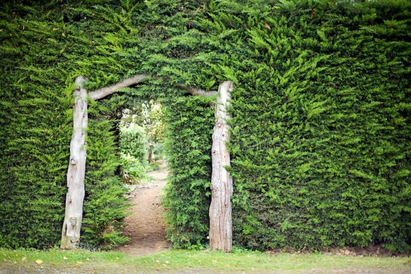 trädgårds- hemlighet arkivfoton