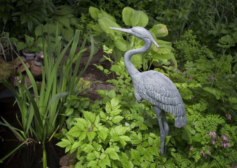 trädgårds- heron royaltyfria foton