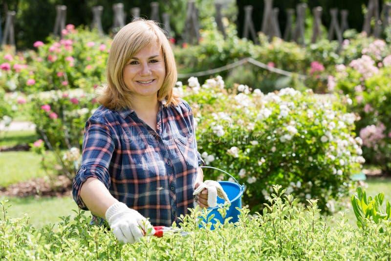 Trädgårds- hjälpmedel för kvinna royaltyfri fotografi