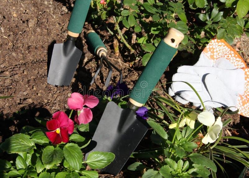 Trädgårds- hjälpmedel och blommor royaltyfri bild