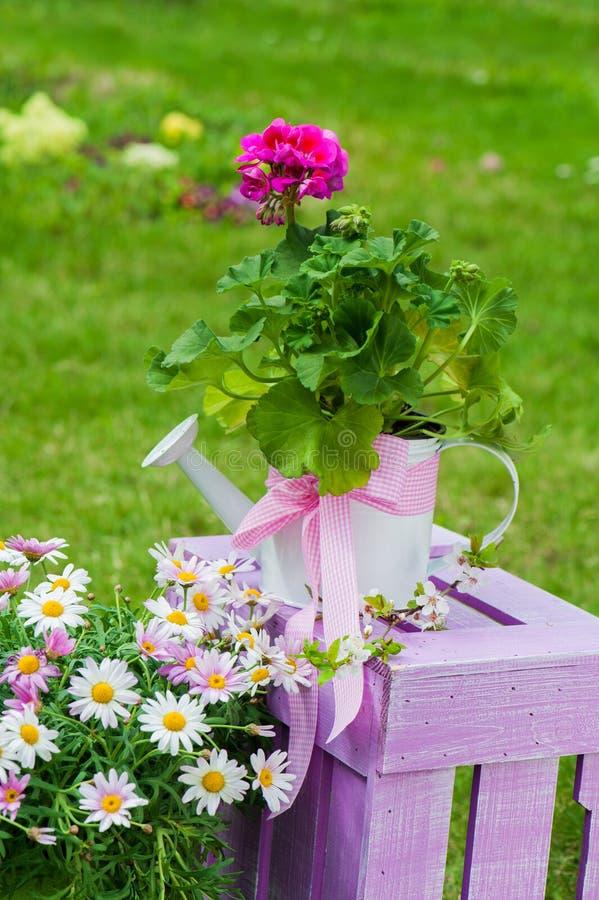 Trädgårds- idyll royaltyfria bilder