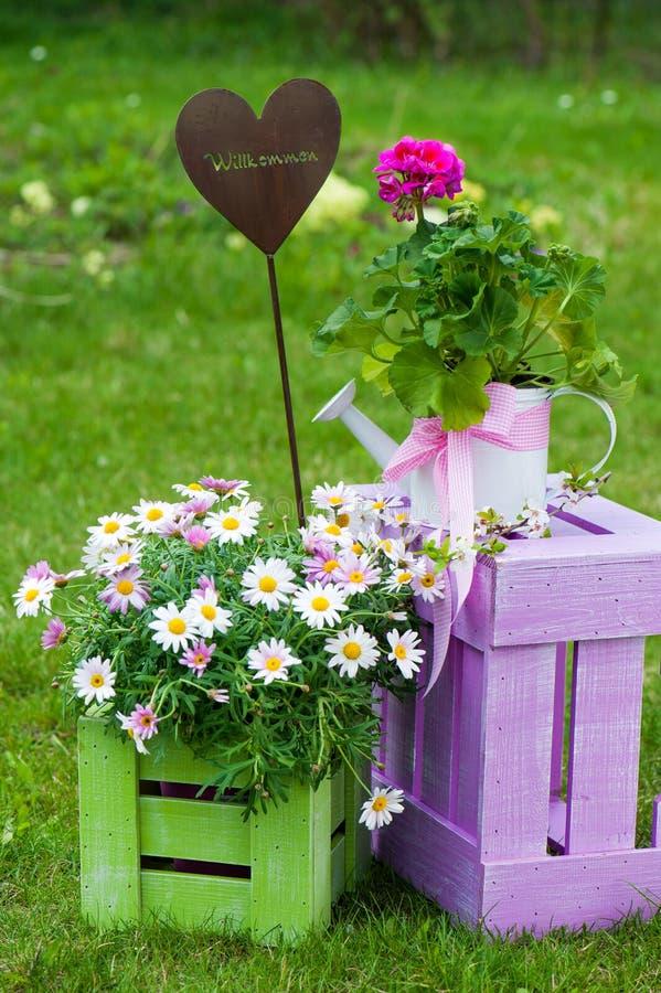 Trädgårds- idyll fotografering för bildbyråer