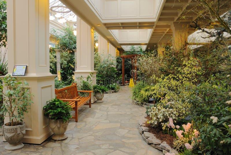 trädgårds- inomhus royaltyfri fotografi