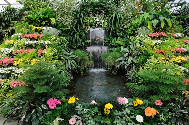 trädgårds- inomhus arkivfoton