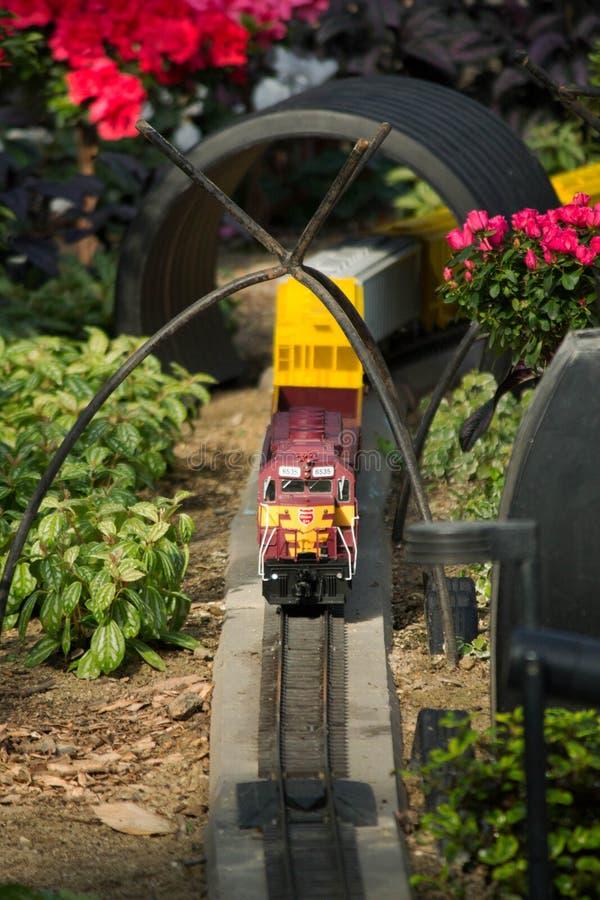 Trädgårds- järnvägbil royaltyfria foton