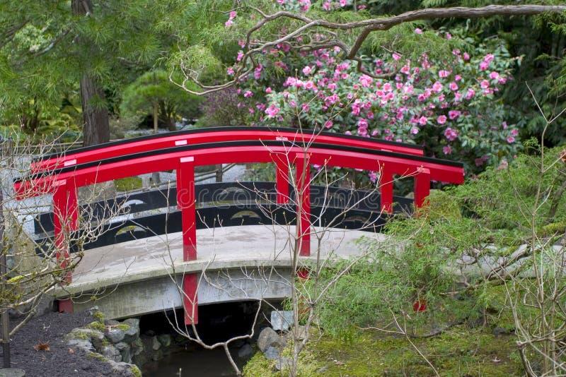 trädgårds- japan 2 arkivbilder