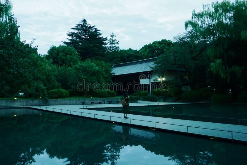 trädgårds- japan flicka på bron över ett konstgjort damm royaltyfri bild