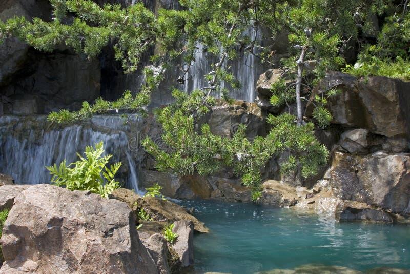 trädgårds- japanes royaltyfri foto