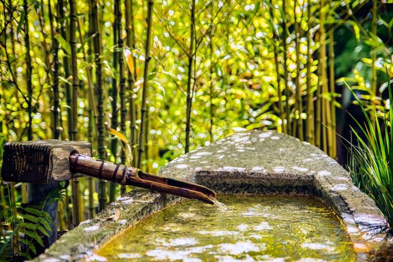 trädgårds- japansk tea arkivbilder