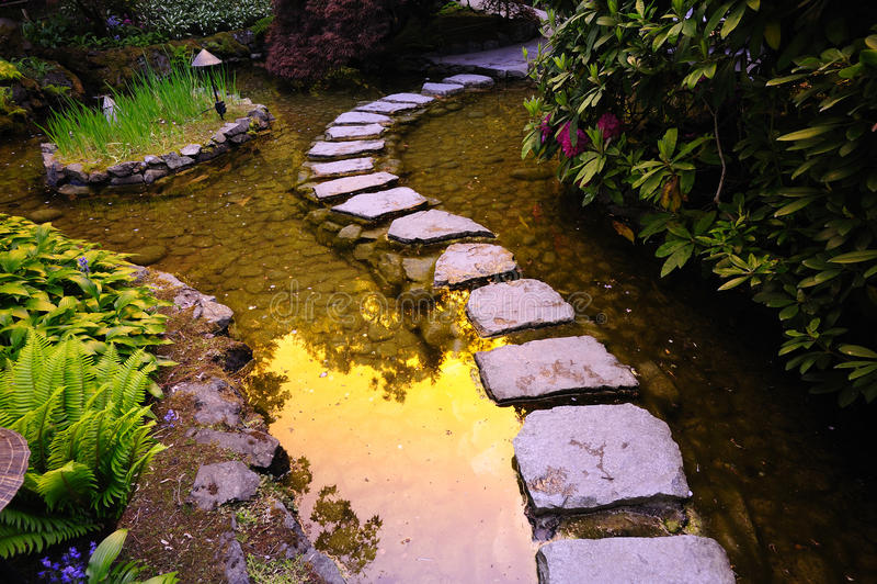 trädgårds- japanskt damm arkivbilder