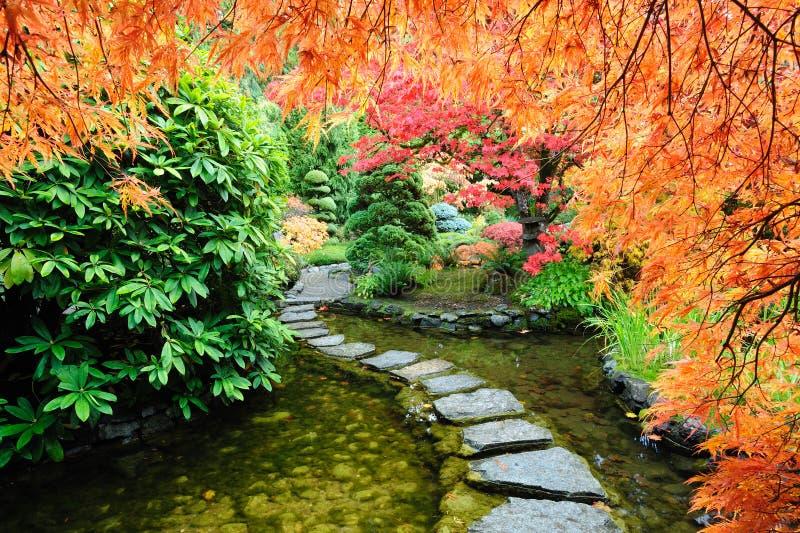 trädgårds- japanskt damm arkivfoton