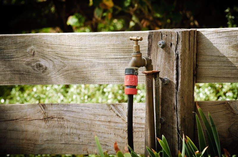 trädgårds- koppling arkivfoto