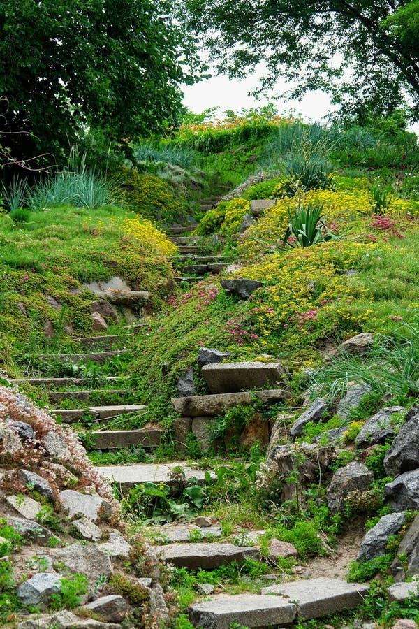 Trädgårds- kulturlandskap med marmorstentrappa arkivfoto