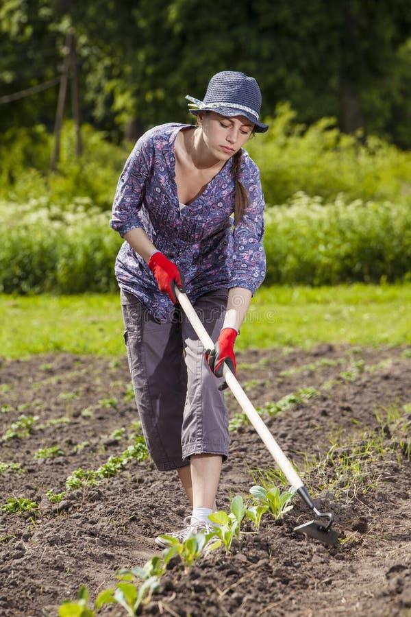trädgårds- kvinna fotografering för bildbyråer