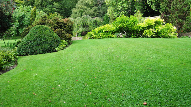 trädgårds- lawn royaltyfri foto