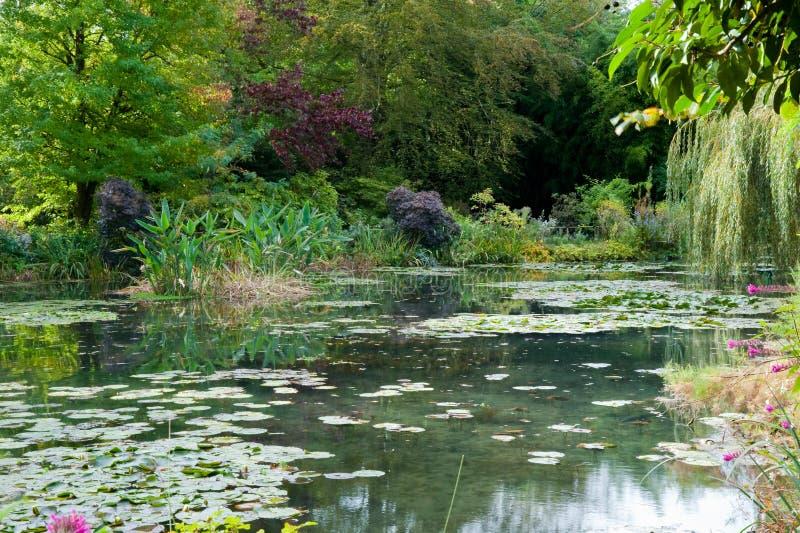 trädgårds- liljamonetdamm s royaltyfria foton