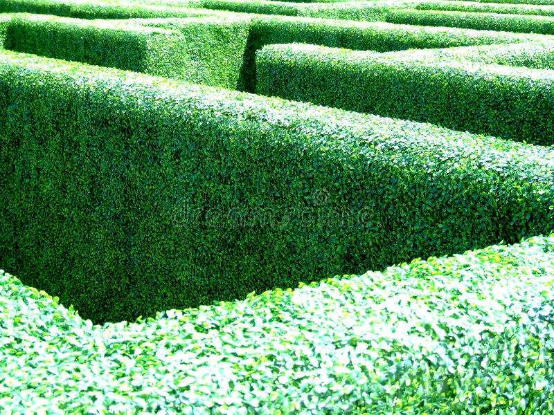 trädgårds- maze royaltyfri foto