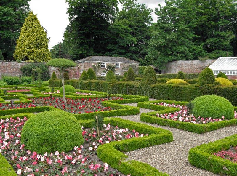trädgårds- maze royaltyfri bild
