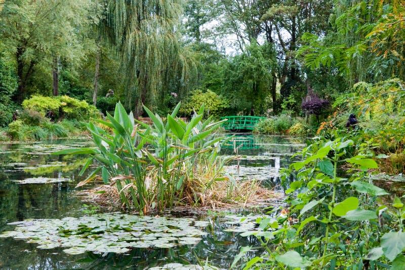 trädgårds- monetdamm s arkivbild