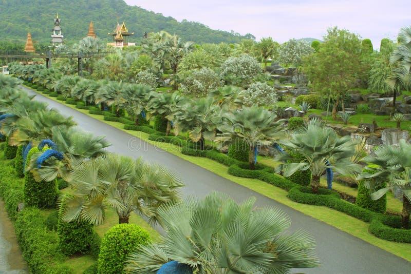 trädgårds- nongnooch pattaya tropiska thailand arkivbild