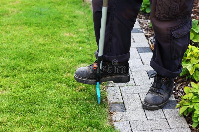 Trädgårds- omsorg royaltyfri foto