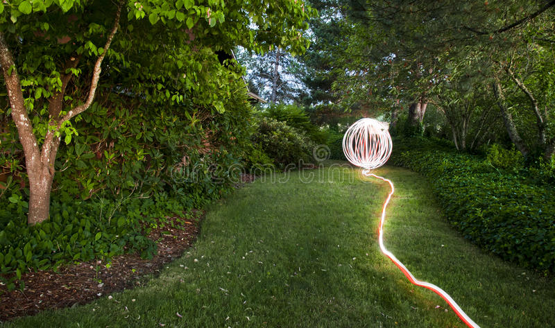 trädgårds- orb fotografering för bildbyråer