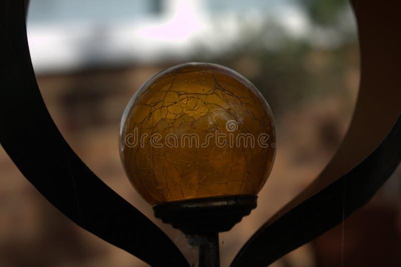 Trädgårds- orb royaltyfria bilder