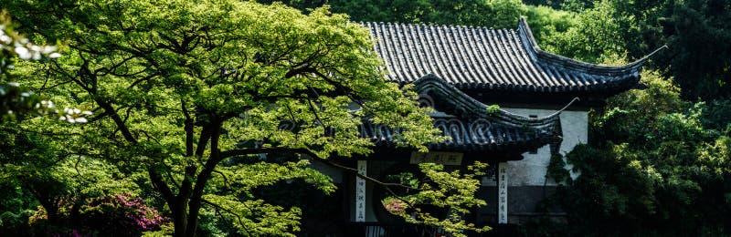 Trädgårds- panorama för kines royaltyfri foto
