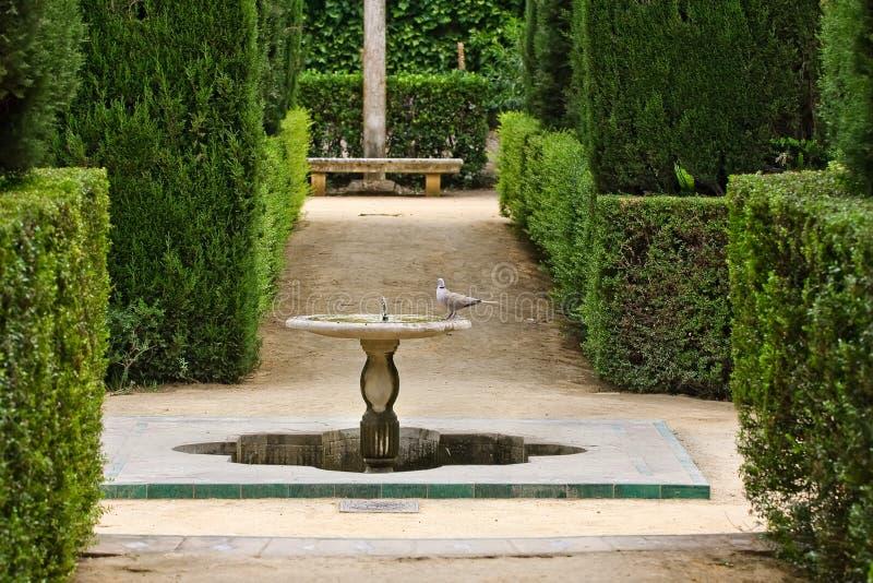trädgårds- poets royaltyfria bilder
