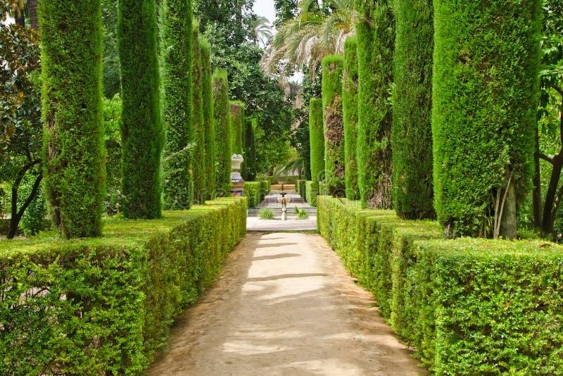 trädgårds- poets royaltyfri foto