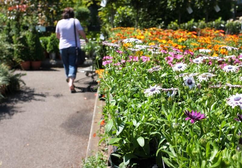 trädgårds- shopping för mitt royaltyfria bilder