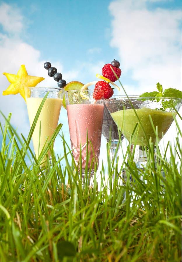 trädgårds- smoothies för frukt arkivbild