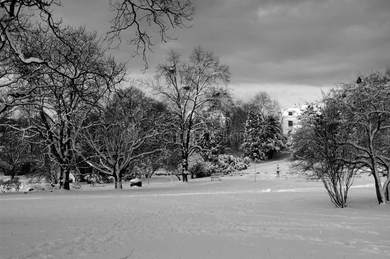 trädgårds- snow för stad arkivbilder