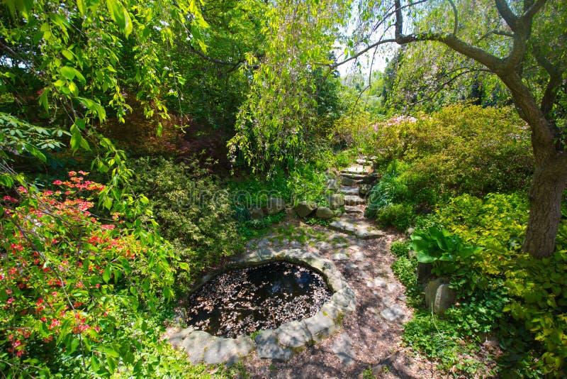 trädgårds- soligt för dag royaltyfri bild
