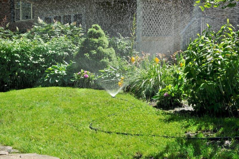 trädgårds- sprinkler royaltyfria foton