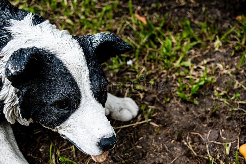 Trädgårds- stenstaty av hunden på gräsmattan royaltyfri fotografi