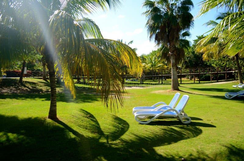 trädgårds- stora vardagsrumar för chaise royaltyfri fotografi